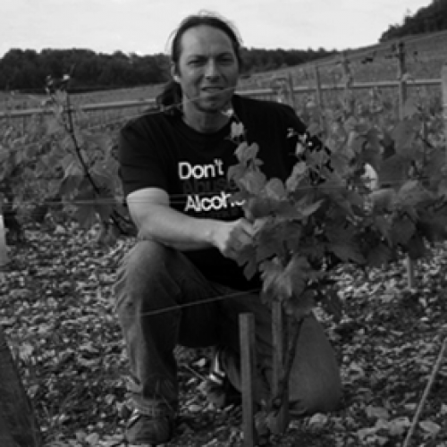 files/images/winemakers/france/domaine-philippe-goulley-burgundy/Philippe Goulley_sq.png