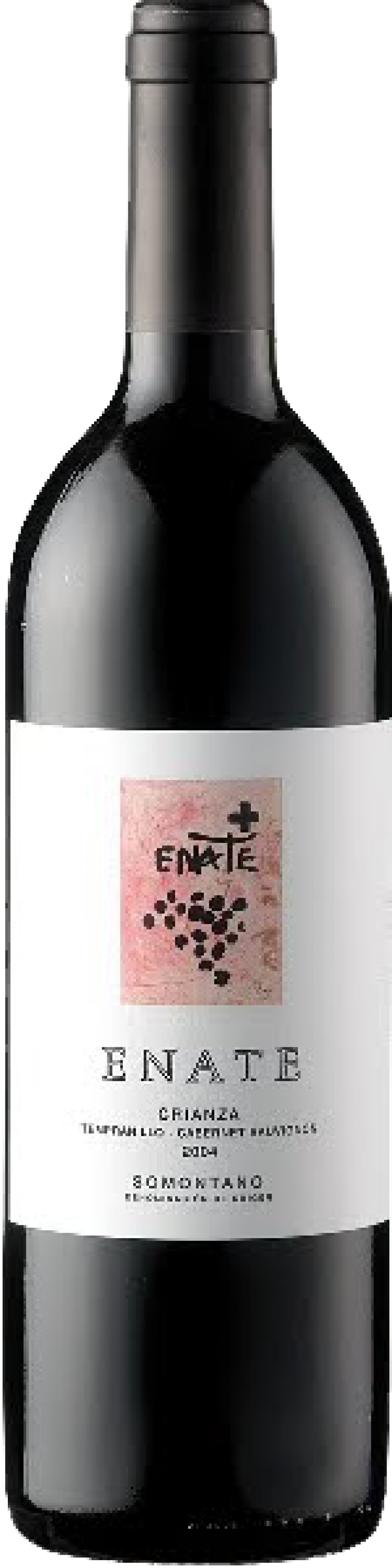 files/images/wines/Spain/enate-somontano/ESET2009_pic_big.png